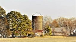 360Z8 - tree top silo