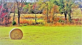 4133 - battlefield to hayfield