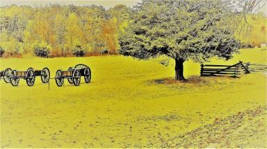 4134 - appomattox field 1