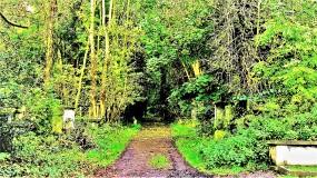 5845 - abney park cemetary