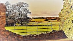 6395.2 - british farm 2
