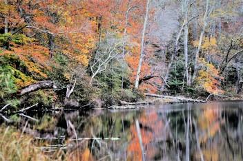 OTR0309.2 river of color2