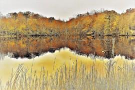 OTR0322.2 mirror image