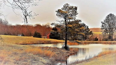 OTR3908.2 irrigation pond