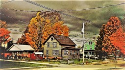 Maple Street fall 13 (2)