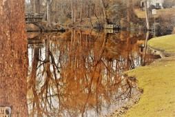 OTR360Z4 martins pond2